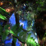 6-colores-naturales-para-web